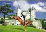 Programme loisirs et accompagnants du 47ème congrès national : Entre fleuve royal, vins, patrimoine, troglodytes et châteaux de la Loire...
